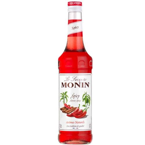 Spicy Monin 70cl Syrup